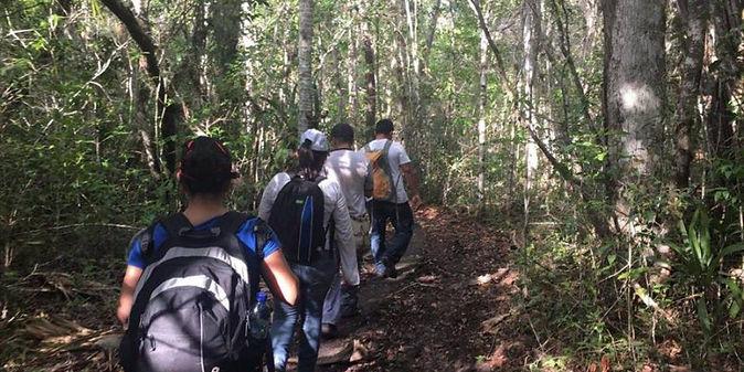 El Mirador - Caminata.jpg