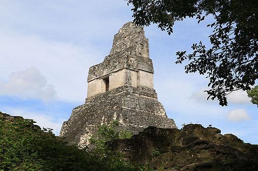 Gran Jaguar Tikal, Petén (3).JPG