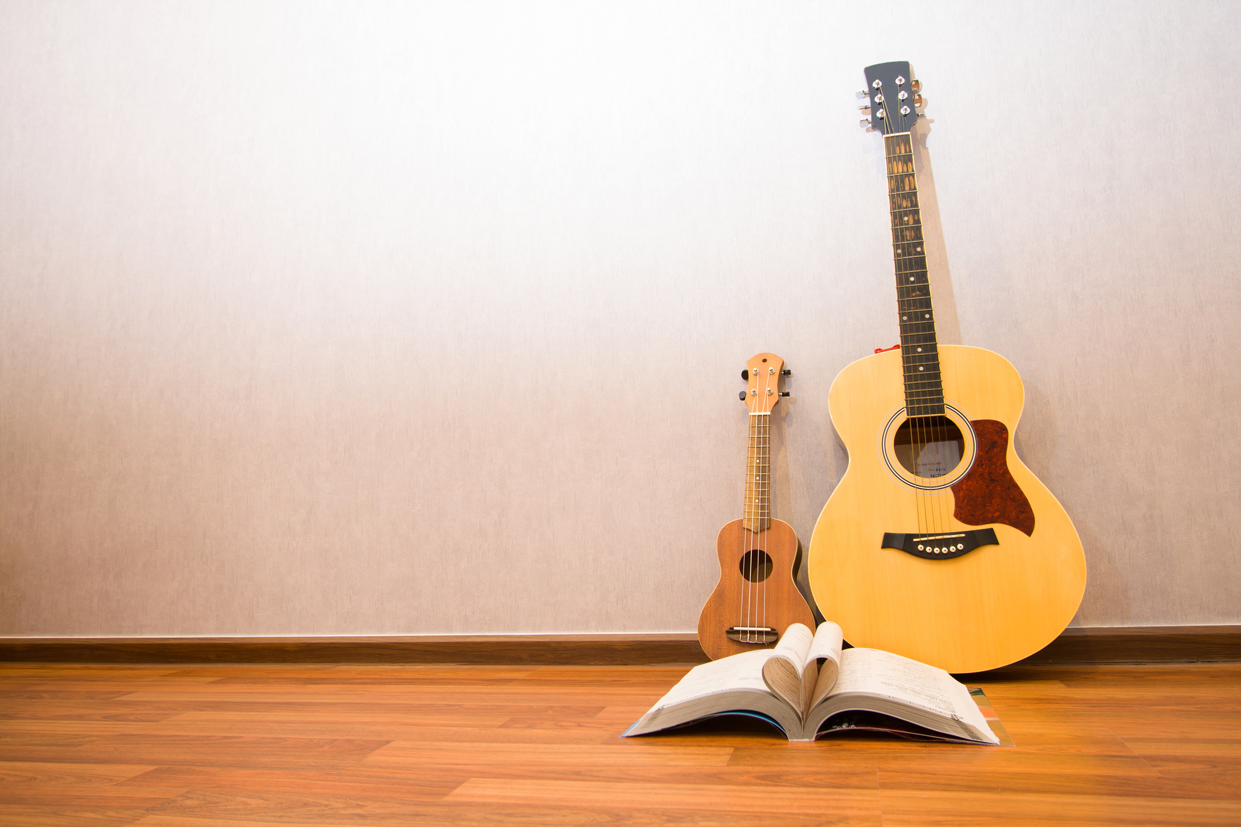 musical instruments guitar ukulele and h