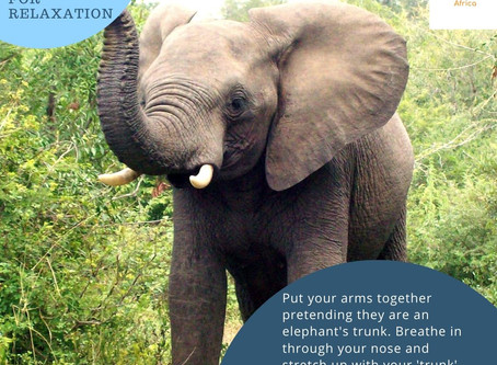 Day 10 - Elephant Breath for Children