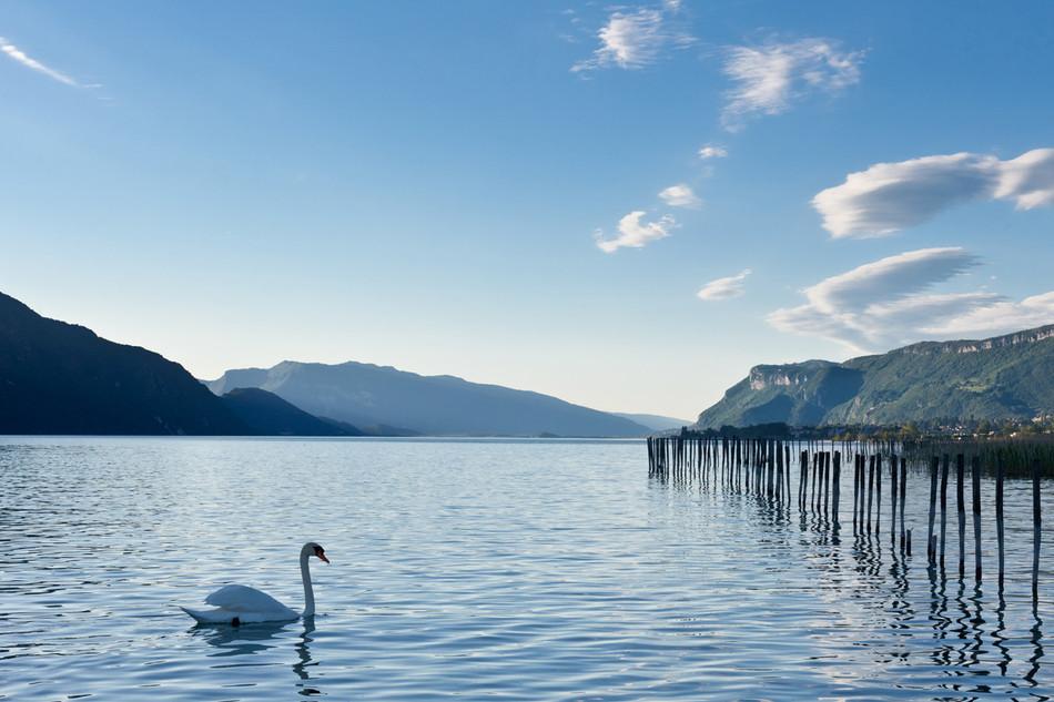 Lac du Bourget (15 mn)