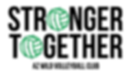 AZ WILD STRONGER TOGETHER TEE IMAGE.png
