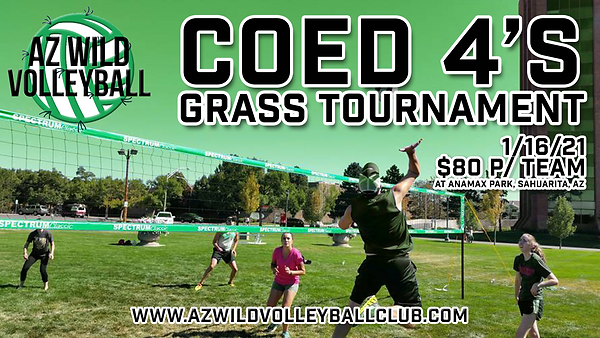 AZ WILD VOLLEYBALL ADULT 4'S GRASS TOURN
