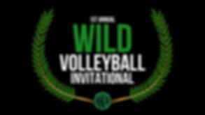 AZ WILD VOLLEYBALL INVITATIONAL LOGO #00
