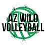 AZ WILD LOGO CACTUS BALL.png