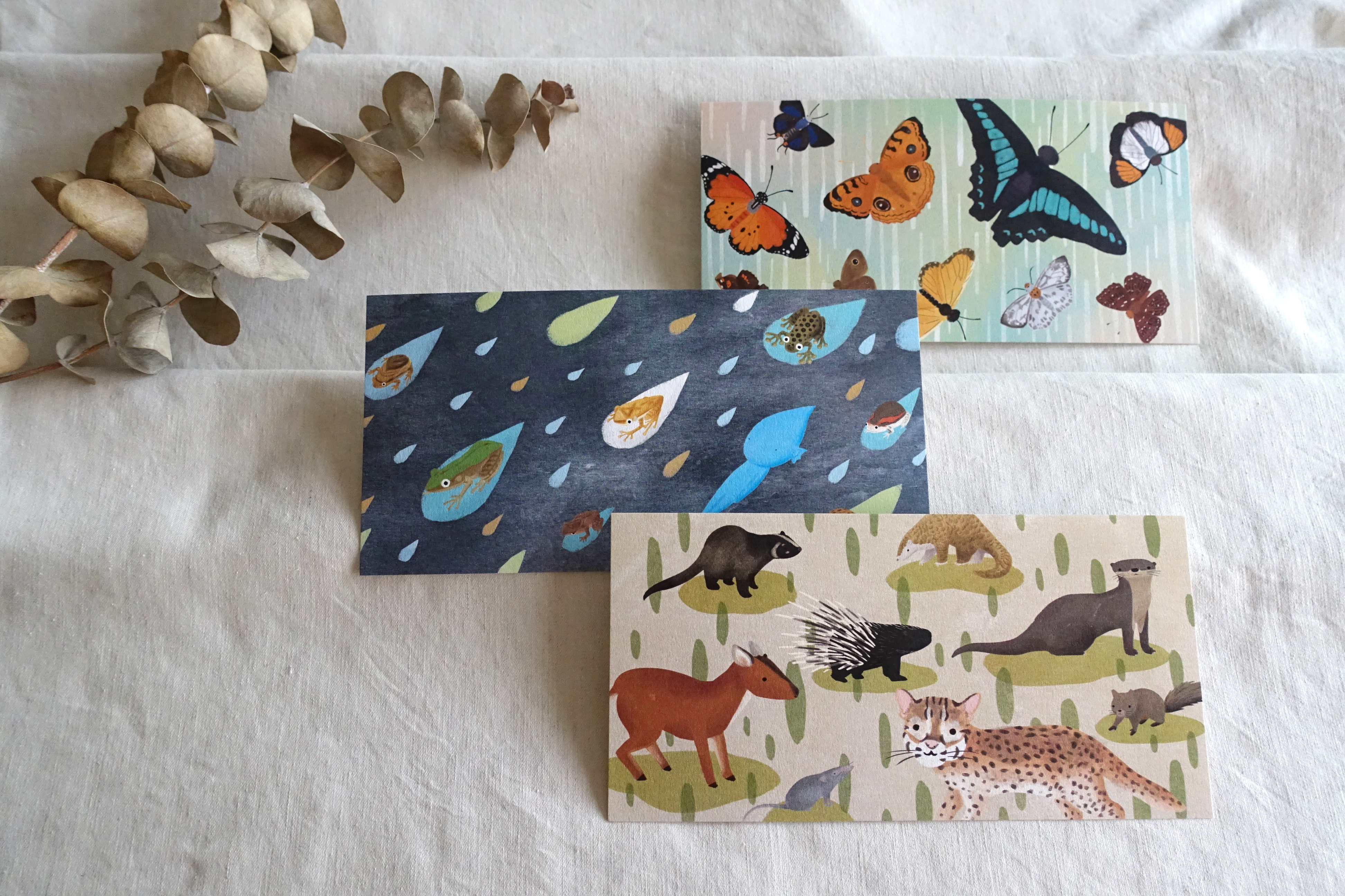 hong kong wildlife postcards