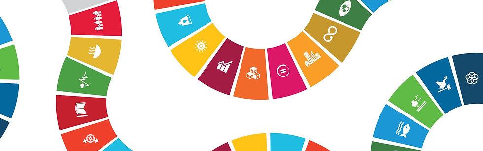UN-SDG-Metsä-Group.jpg