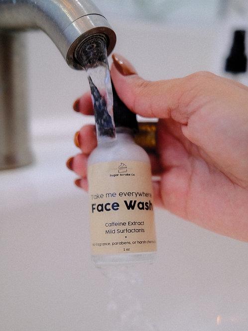 Take Me Everywhere Face Wash