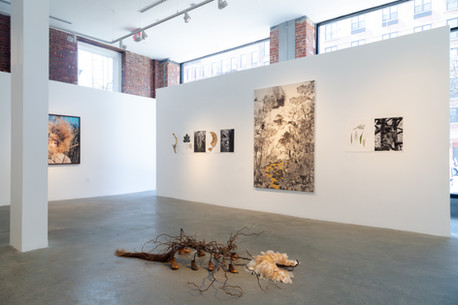 Views of art by (from left to right) Riita Ikonen, Tatiana Arocha, Allison Janae Hamilton work in the exhibition A Perfect Storm at Gallery 8, Harlem, New York, 15 February - 8 March, 2020