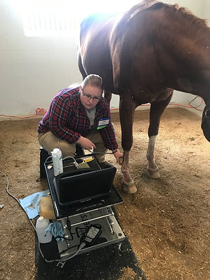 BayshoreEquine_Scope