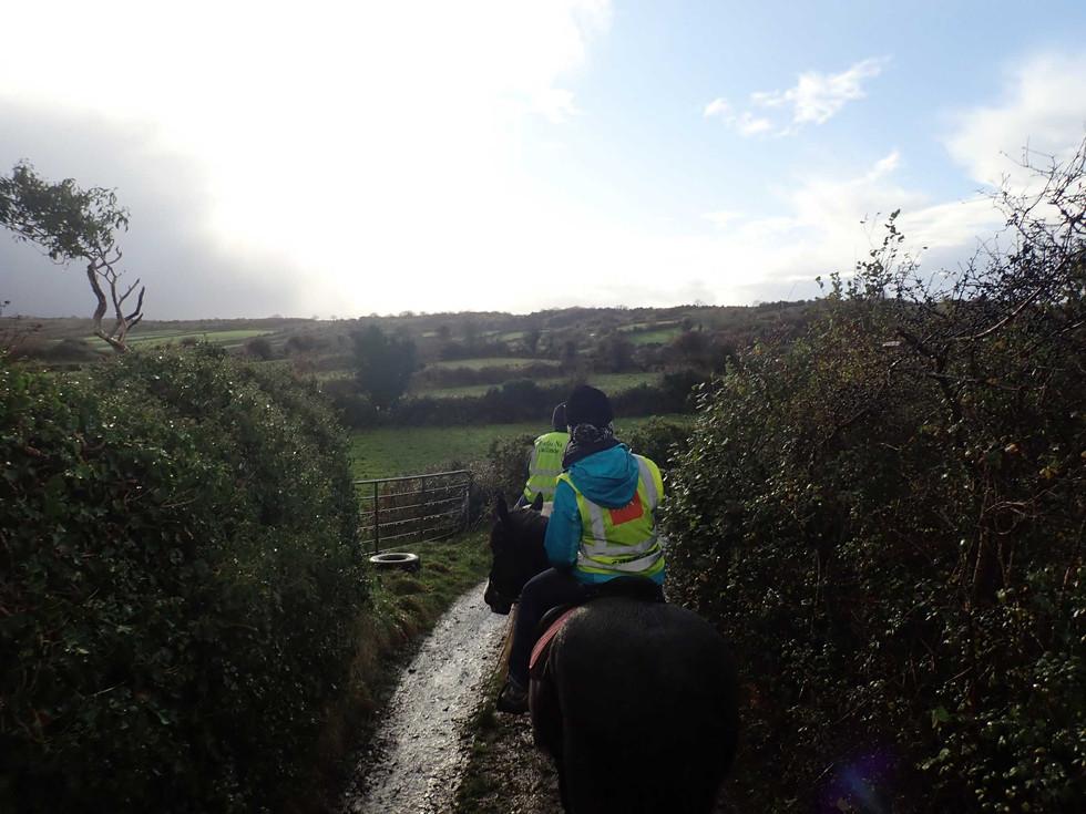 Riding the Connemara Ponies