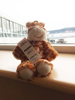 Got my ticket to ride... Jerome's first trip on a Ferry, Duke point Nanaimo to Vancouver, it's a big boat for a little guy.