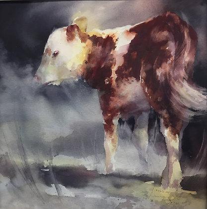 """Original Watercolor by Beth Verheyden - """"The Calf"""""""