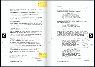 script preview.png