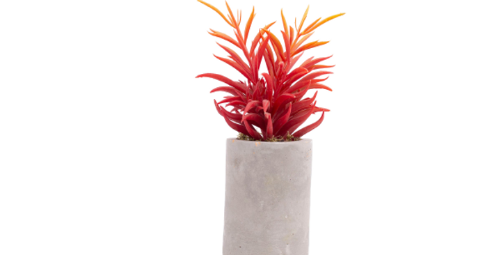 Long Cylindrical Planter