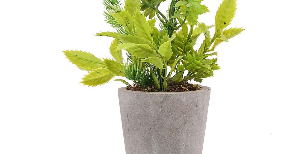 Tiny Pot