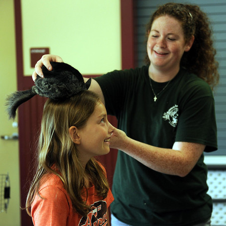 Gallery: Vet School in Ashland