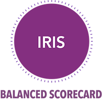 Product Features Over (IRIS).png