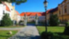 Copy of zidlo3.jpg