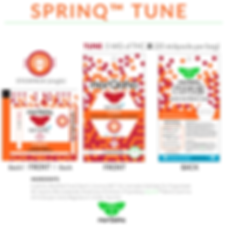 sprinQ-TUNE-stickpack-Overview.png