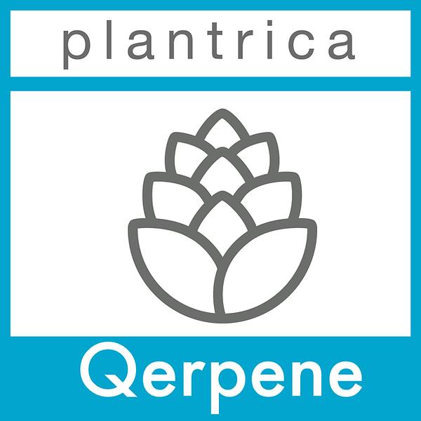 Qerpene-plantrica.png
