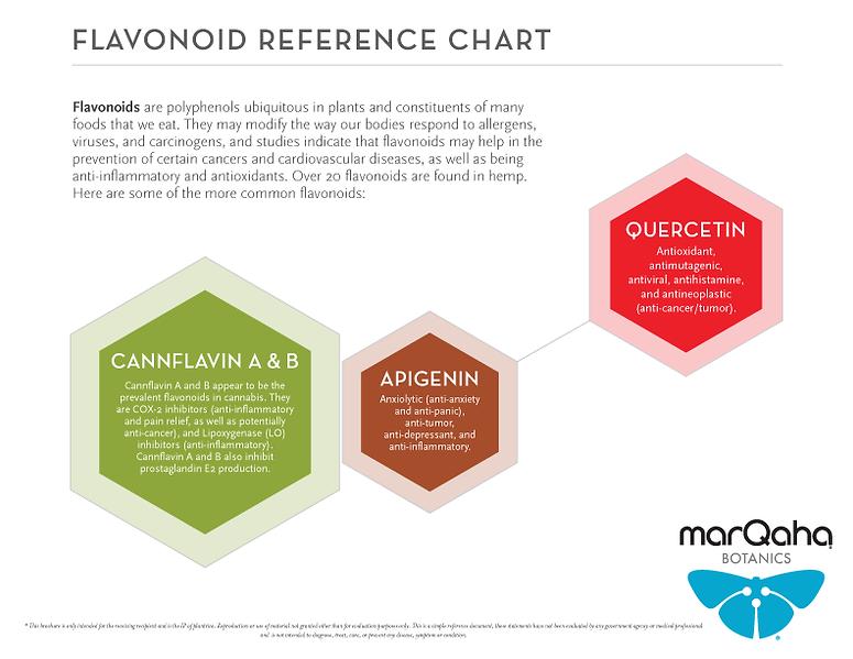 marQaha-Botanics-Flavonoid-Infographic.p