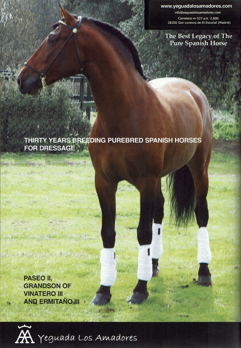 2013 Paseo book advert