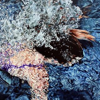 Dive (in Purple)