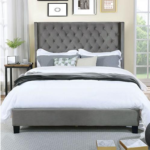 Imprad RYLEIGH Transitional Gray Velvet-like Fabric Bed