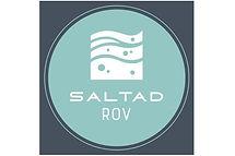 Saltad Logo.jpg