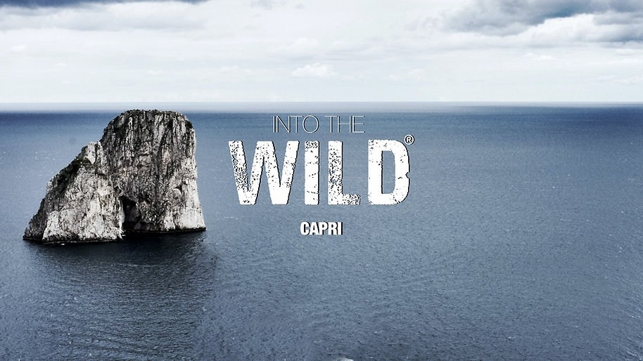 copertina sito capri.jpg