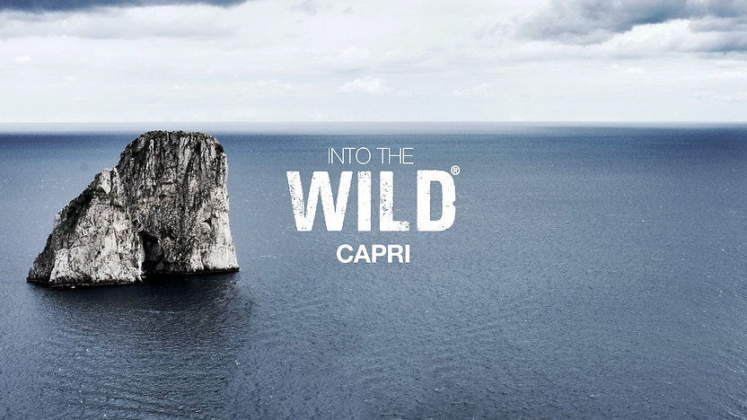 cop sito capri.jpg
