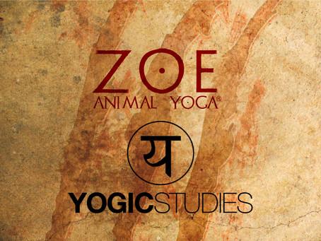 Zoé Animal Yoga® e Yogic Studies©