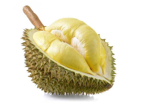 Durian Monthong, Thailand - uge 43