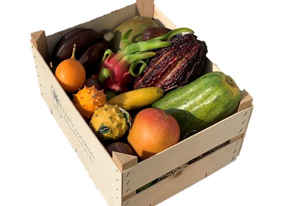 Jungle Box, ca. 7 kg - Fra hele verden