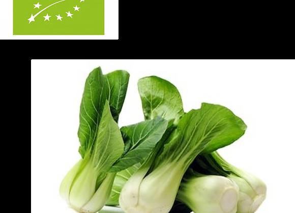 Pakchoy, økologisk 4 stk