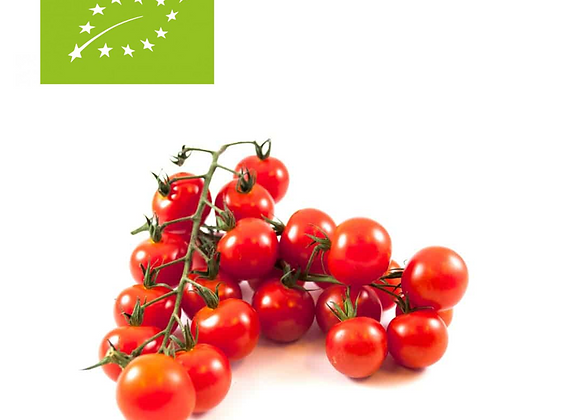 Honeydrop cherrytomat på stilk. Øko & Bio, Holland 1 kg