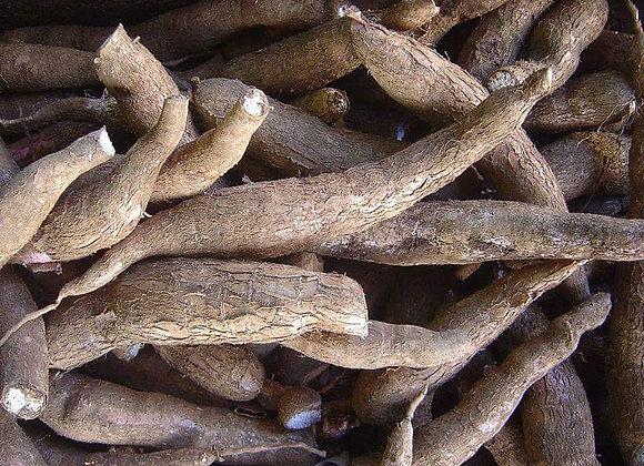 Cassava 1 kg, ikke sprøjtet - Uganda🌴