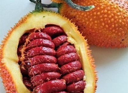 Gac fruit, 1 kg - Sri Lanka