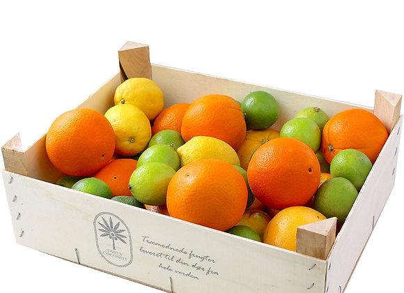 Citrus box, 5 kg - Økologisk