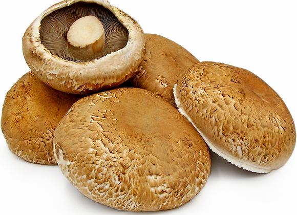 Portobello svampe, økologiske 500g - Holland