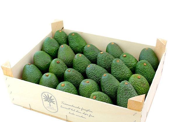 Avocado hass, Økologisk 4 kg 🌳