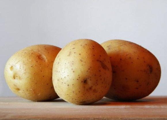 Kartofler Vitabel, Økologisk 2,5 kg - Holland