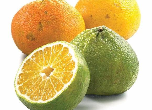 Ugli Fruit, Jamaica - ca. 400g