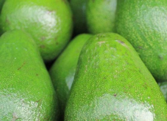 Avocado, 2,5 kg - Uganda