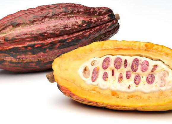 Kakaofrugt, 1 stk - Equador