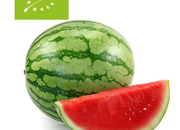 Vandmelon, Økologisk - Spanien