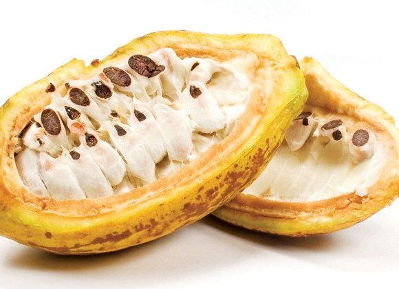 Kakaofrugt, ikke sprøjtet - Uganda🌴