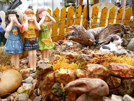 Miniature and Fairy Gardens