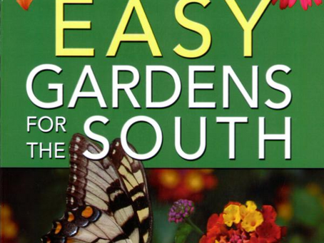 Tips to Create Pollinator Gardens